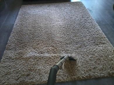 Uw karpet reinigen wij professioneel en milieuvriendelijk in